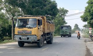 Các xe chỉ nên chở hàng hóa theo trọng tải của nhà sản xuất khuyến cáo